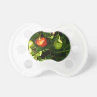 two hot peppers on the plant baby pacifiers