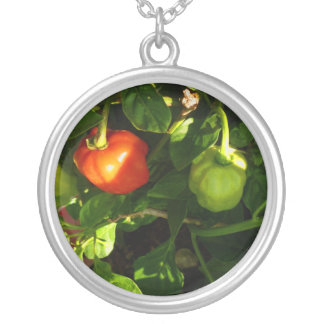 two hot peppers on the plant silver plated necklace