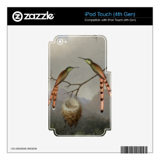 Two Hummingbirds With Their Young - Martin Heade Skins For iPod Touch 4G