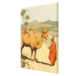 Two-hump Bactrian Camel in the Desert Canvas Print