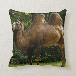 Two Humped Camel Pillow