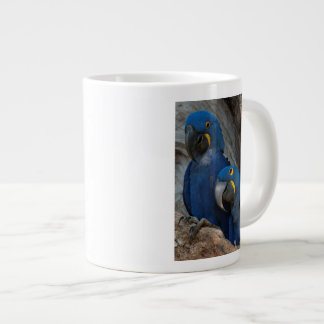 Two Hyacinth Macaws, Brazil Giant Coffee Mug