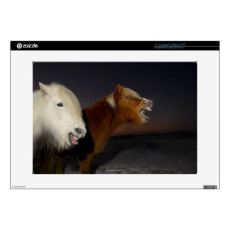 """Two Icelandic horses Decal For 15"""" Laptop"""