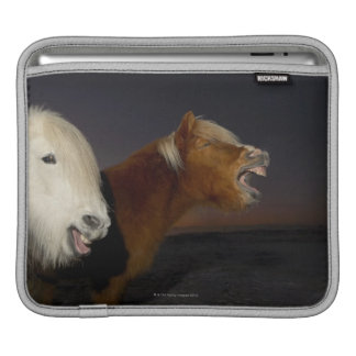 Two Icelandic horses Sleeve For iPads