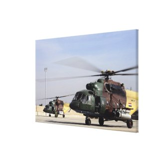 Two Iraqi Mi-17 Hip Helicopters Canvas Print