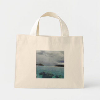 Two islands or one mini tote bag
