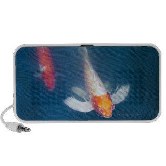 Two Japanese koi fish in pond Portable Speaker