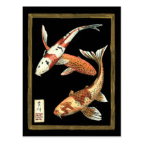 Two Japanese Koi Goldfish on Black Background Postcard
