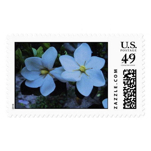 two jasmins postage stamps
