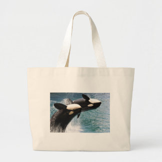 Two killer whales jumping out of water bag