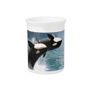 Two killer whales jumping out of water beverage pitcher