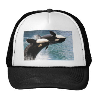 Two killer whales jumping out of water trucker hat