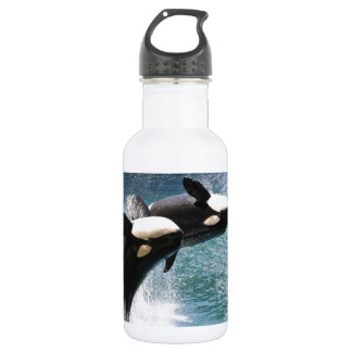 Two killer whales jumping out of water water bottle