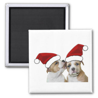 Two Kissing Pitties in Christmas Santa Hats 2 Inch Square Magnet
