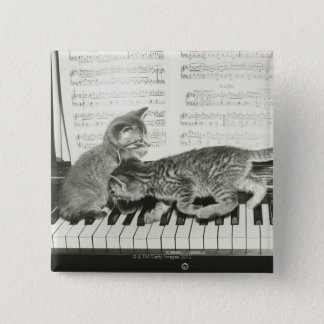 Two kitten playing on piano keyboard, (B&W) Button