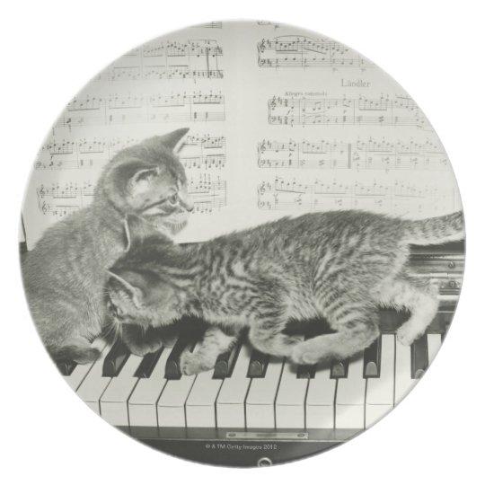 Two kitten playing on piano keyboard, (B&W) Melamine Plate
