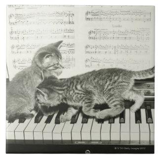 Two kitten playing on piano keyboard, (B&W) Tile
