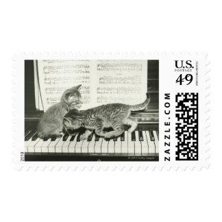 Two kitten playing on piano keyboard stamp
