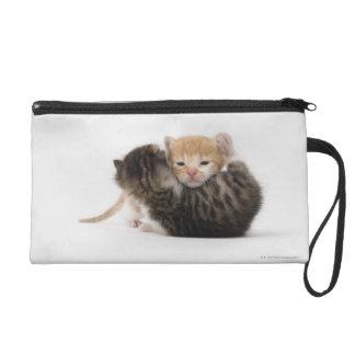 Two kittens cuddling on white background wristlet purse