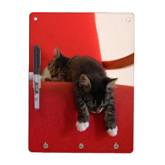 Two Kittens Hanging off a Red Chair Cushion Dry-Erase Board