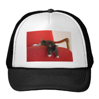 Two Kittens Hanging off a Red Chair Cushion Trucker Hat