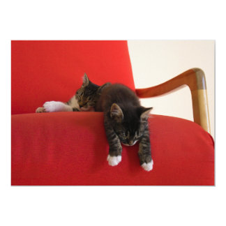 Two Kittens Hanging off a Red Chair Cushion 5x7 Paper Invitation Card