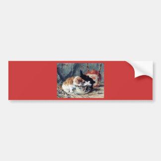 Two kittens having tea party bumper sticker