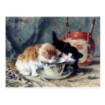 Two Kittens Having Tea Party Postcard at Zazzle