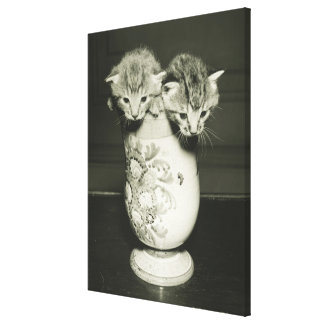 Two kittens hiding in vase, (B&W) Canvas Print