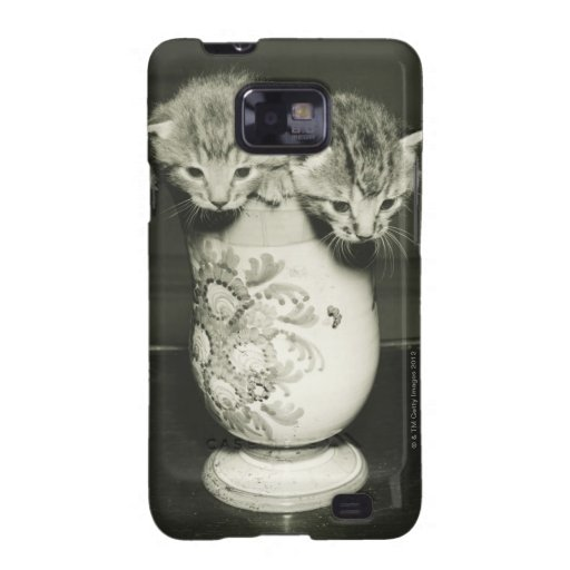 Two kittens hiding in vase, (B&W) Samsung Galaxy S Case