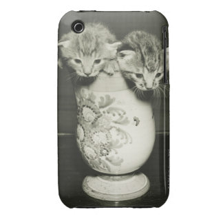 Two kittens hiding in vase, (B&W) iPhone 3 Case