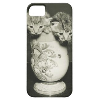 Two kittens hiding in vase, (B&W) iPhone SE/5/5s Case