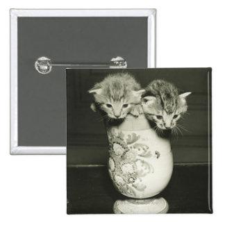 Two kittens hiding in vase, (B&W) Pinback Button