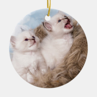 two kittens meow ceramic ornament