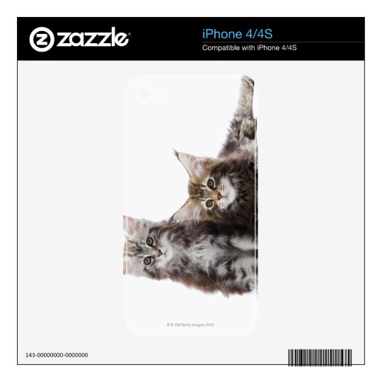 Two kittens of Maine coon cat Decals For The iPhone 4S