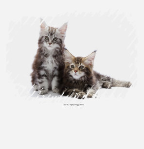 Two Kittens Of Maine Coon Cat T Shirt