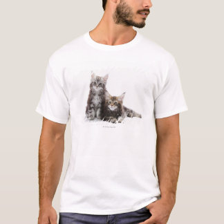 Two kittens of Maine coon cat T-Shirt