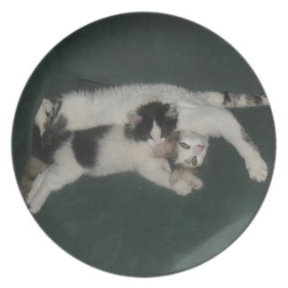 Two Kittens Plate