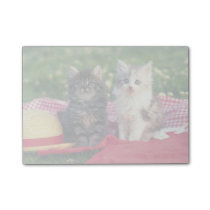 Two Kittens Sitting On A Red-Colored Blanket Post-it Notes