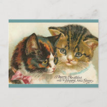Two Kitties Christmas Holiday Postcard