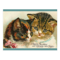 Two Kitties Christmas Postcard