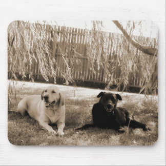 Two Labs Black and White Mouse Pad