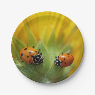 Two Lady Bugs on a Sunflower Paper Plate