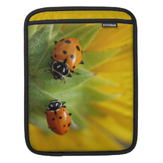 Two Lady Bugs on a Sunflower Sleeve For iPads