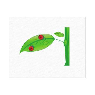 Two ladybugs on green leaf stem eco design.png canvas print