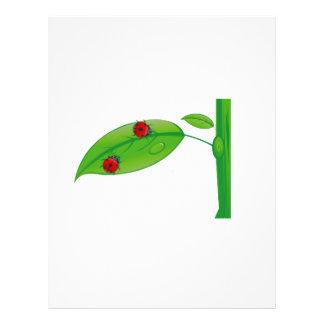 Two ladybugs on green leaf stem eco design png full color flyer