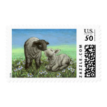 Two lambs kissing postage
