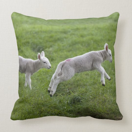 Two Lambs Throw Pillow