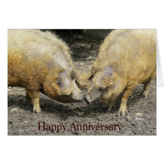 Two Large Pigs Happy Anniversary Card