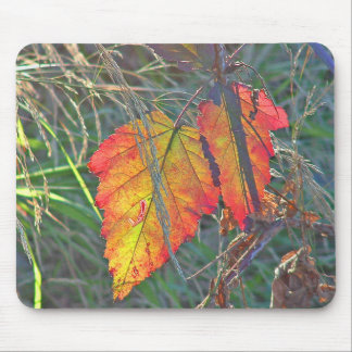 Two Leaves Overlapped Mousepad